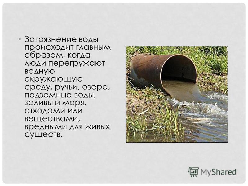 Загрязнение воды происходит главным образом, когда люди перегружают водную окружающую среду, ручьи, озера, подземные воды, заливы и моря, отходами или веществами, вредными для живых существ.
