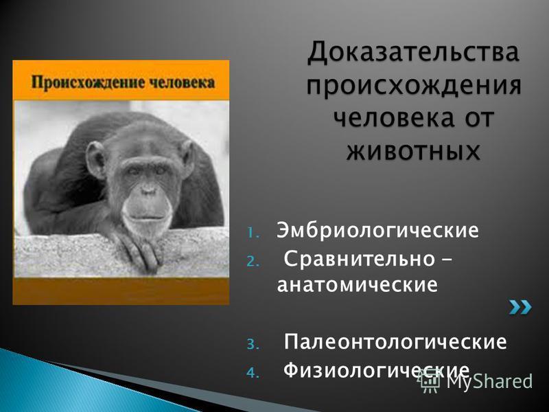 1. Эмбриологические 2. Сравнительно - анатомические 3. Палеонтологические 4. Физиологические Доказательства происхождения человека от животных