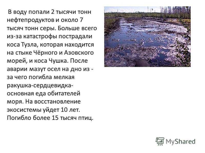 В воду попали 2 тысячи тонн нефтепродуктов и около 7 тысяч тонн серы. Больше всего из-за катастрофы пострадали коса Тузла, которая находится на стыке Чёрного и Азовского морей, и коса Чушка. После аварии мазут осел на дно из - за чего погибла мелкая