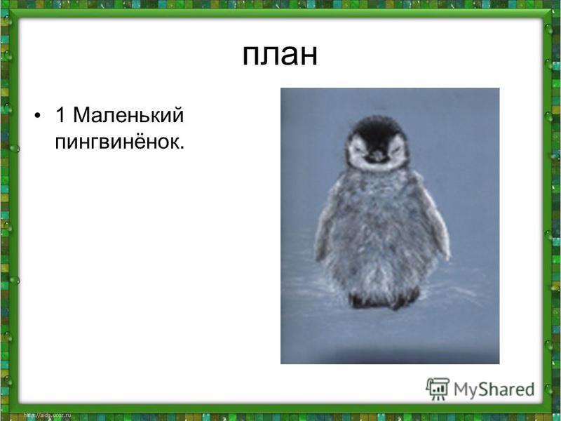 план 1 Маленький пингвинёнок.