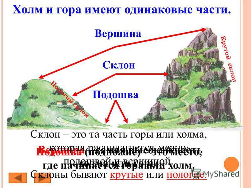 Холм и гора имеют одинаковые части. Подошва Подошва (подножие) – это место, где начинается гора или холм. Склон Вершина Вершина – самая высокая часть холма или горы. Пологий склон Крутой склон Склон – это та часть горы или холма, которая располагаетс