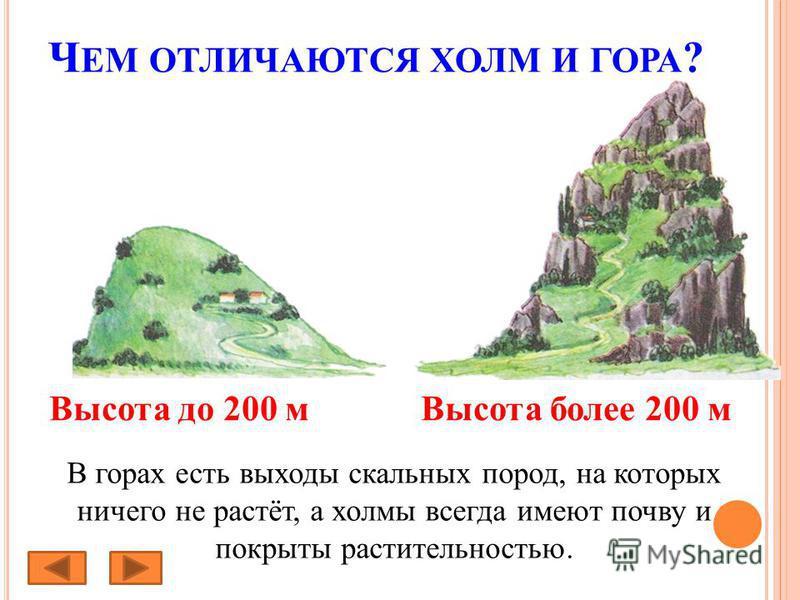Ч ЕМ ОТЛИЧАЮТСЯ ХОЛМ И ГОРА ? В горах есть выходы скальных пород, на которых ничего не растёт, а холмы всегда имеют почву и покрыты растительностью. Высота до 200 м Высота более 200 м