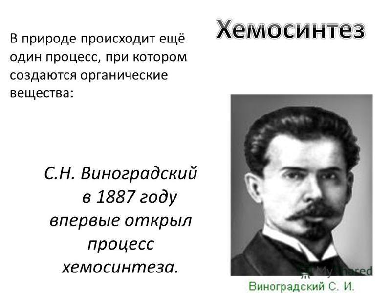 С.Н. Виноградский в 1887 году впервые открыл процесс хемосинтеза. В природе происходит ещё один процесс, при котором создаются органические вещества: