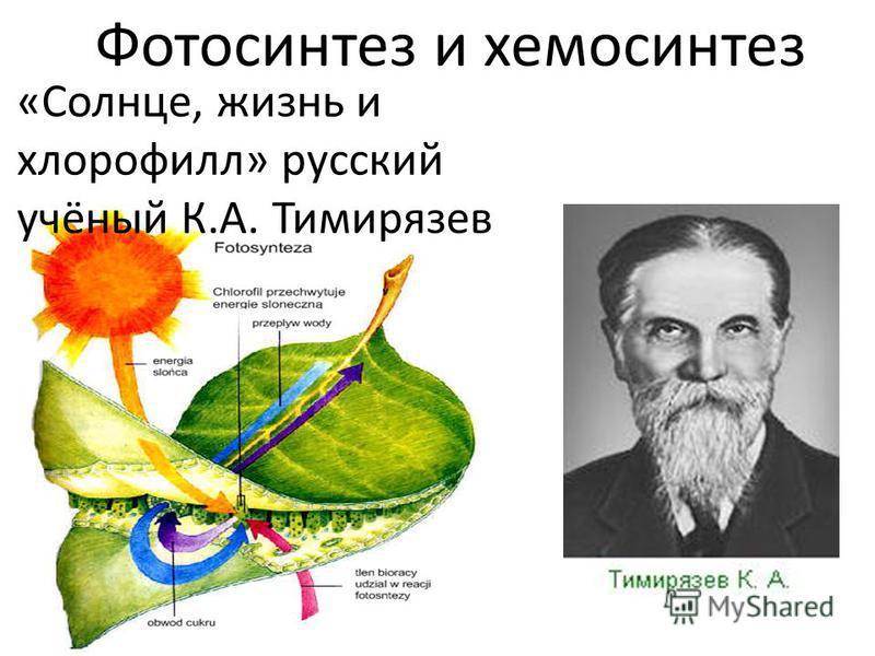Фотосинтез и хемосинтез «Солнце, жизнь и хлорофиллл» русский учёный К.А. Тимирязев