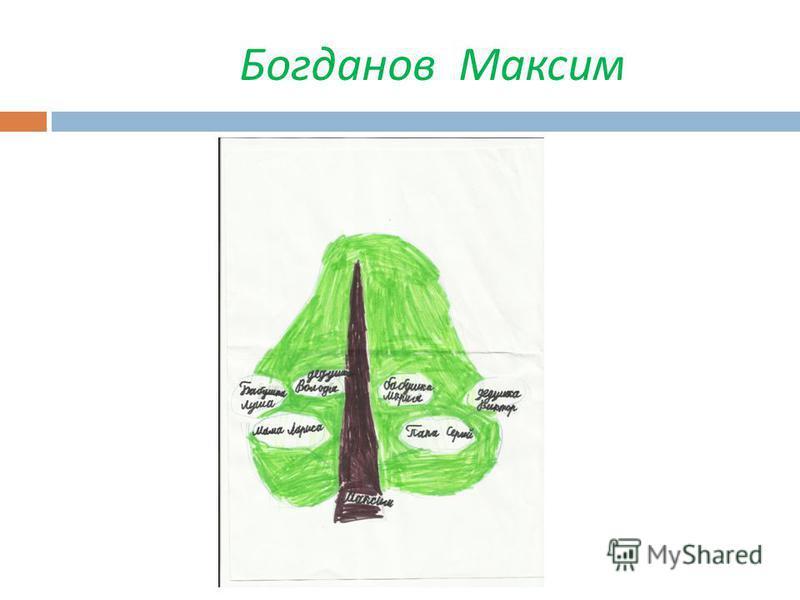 Богданов Максим