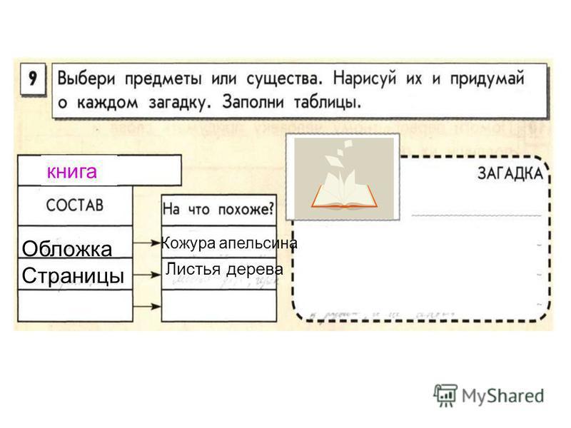 книга Обложка Страницы Листья дерева Кожура апельсина