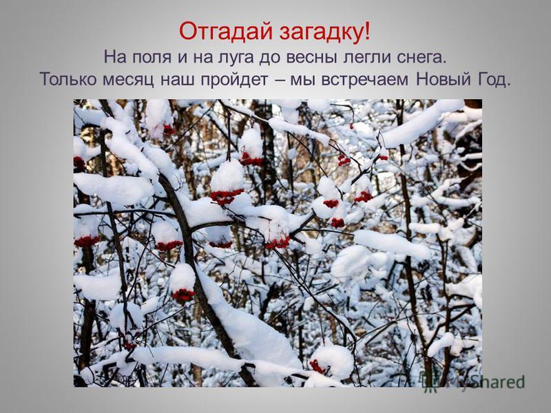 Отгадай загадку! На поля и на луга до весны легли снега. Только месяц наш пройдет – мы встречаем Новый Год.