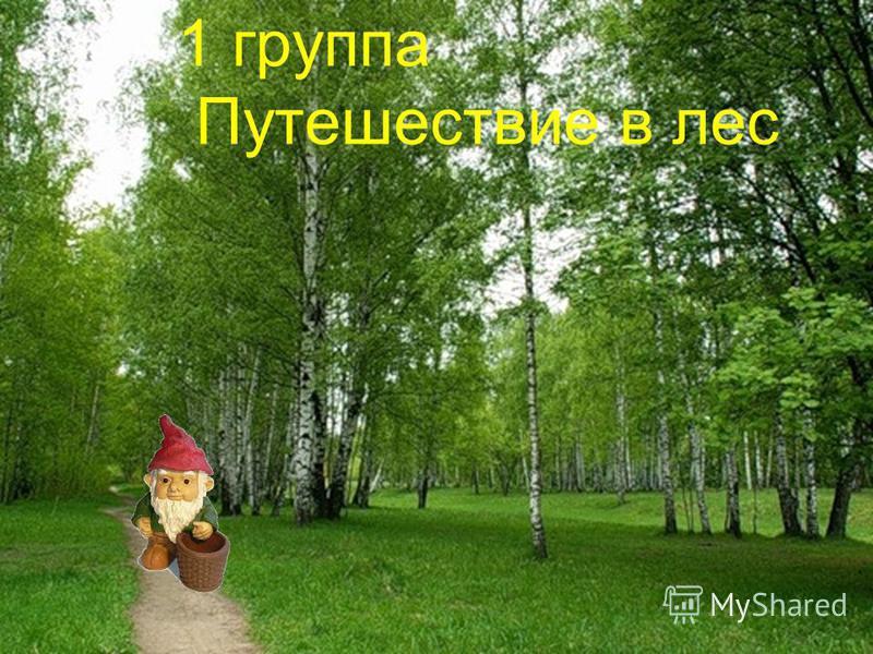 1 группа Путешествие в лес
