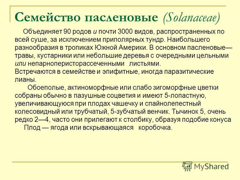 Семейство пасленовые (Solanaceae) Объединяет 90 родов и почти 3000 видов, распространенных по всей суше, за исключением приполярных тундр. Наибольшего разнообразия в тропиках Южной Америки. В основном пасленовые травы, кустарники или небольшие деревь