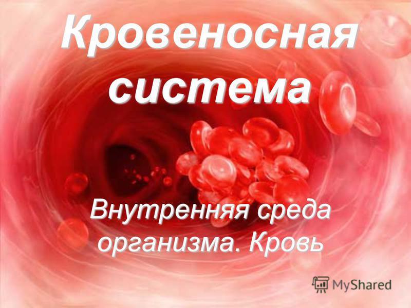 Кровеносная система Внутренняя среда организма. Кровь