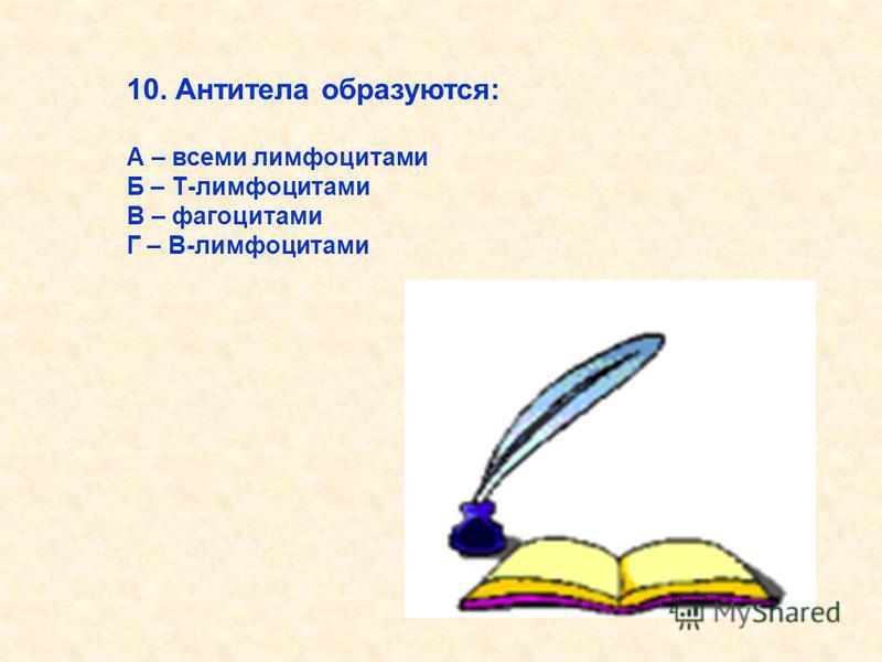 10. Антитела образуются: А – всеми лимфоцитами Б – Т-лимфоцитами В – фагоцитами Г – В-лимфоцитами