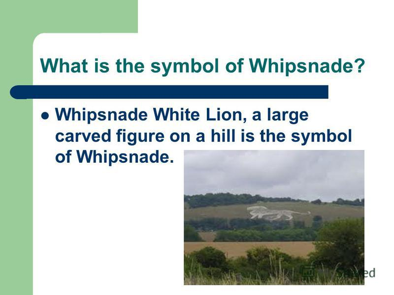 What is the symbol of Whipsnade? Whipsnade White Lion, a large carved figure on a hill is the symbol of Whipsnade.