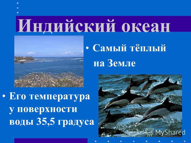 Индийский океан Его температура у поверхности воды 35,5 градуса Самый тёплый на Земле