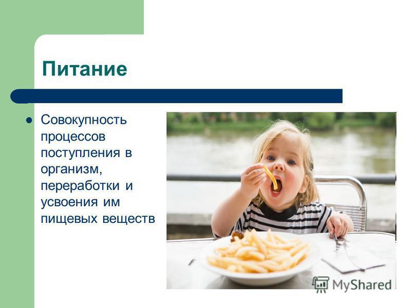 Питание Совокупность процессов поступления в организм, переработки и усвоения им пищевых веществ