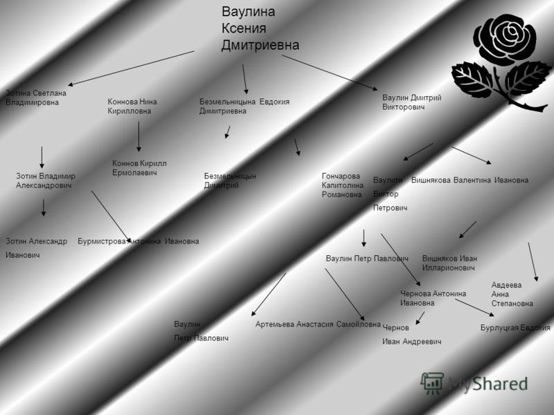 Ваулина Ксения Дмитриевна Зотина Светлана Владимировна Зотин Владимир Александрович Зотин Александр Бурмистрова Антонина Ивановна Иванович Коннова Нина Кирилловна Коннов Кирилл Ермолаевич Безмельницына Евдокия Димитриевна Безмельницын Димитрий Ваулин