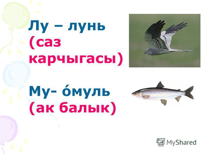 Лу – лунь (саз карчыгасы) Му- ́омуль (ак балык)
