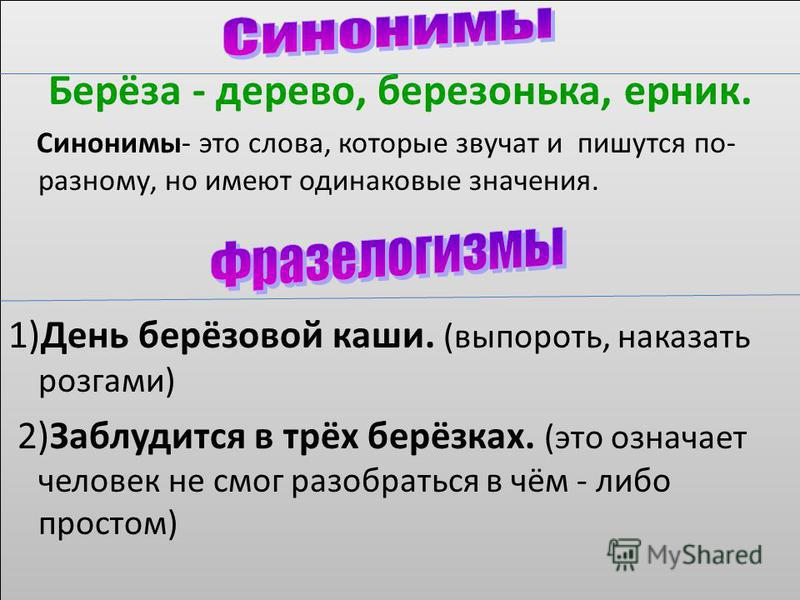 Берёза - дерево, березонька, ерник. Синонимы- это слова, которые звучат и пишутся по- разному, но имеют одинаковые значения. 1)День берёзовой каши. (выпороть, наказать розгами) 2)Заблудится в трёх берёзках. (это означает человек не смог разобраться в