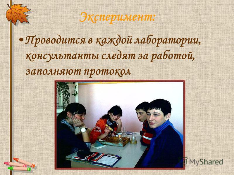 Эксперимент: Проводится в каждой лаборатории, консультанты следят за работой, заполняют протокол