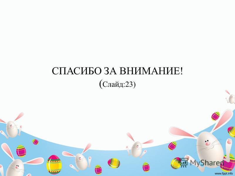 СПАСИБО ЗА ВНИМАНИЕ! ( Слайд:23)