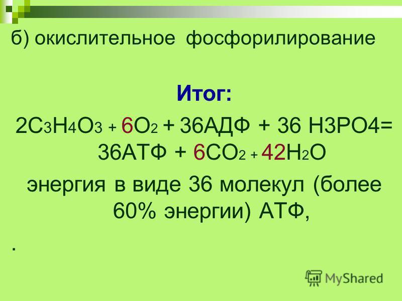 б) окислительное фосфорилирование Итог: 2С 3 Н 4 О 3 + 6О 2 + 36АДФ + 36 Н3РО4= 36АТФ + 6СО 2 + 42Н 2 О энергия в виде 36 молекул (более 60% энергии) АТФ,.