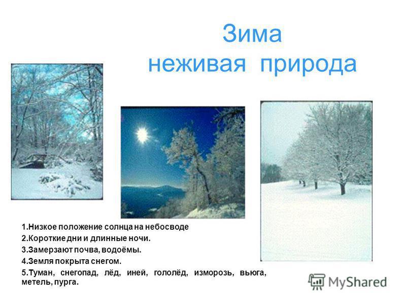 Зима неживая природа 1. Низкое положение солнца на небосводе 2. Короткие дни и длинные ночи. 3. Замерзают почва, водоёмы. 4. Земля покрыта снегом. 5.Туман, снегопад, лёд, иней, гололёд, изморозь, вьюга, метель, пурга.