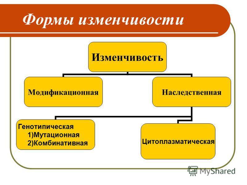 Формы изменчивости Изменчивость Модификационная Наследственная Генотипическая 1)Мутационная 2)Комбинативная Цитоплазматическая