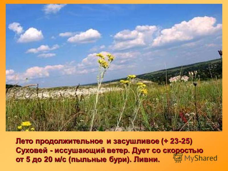 Лето продолжительное и засушливое (+ 23-25) Суховей - иссушающий ветер. Дует со скоростью от 5 до 20 м/с (пыльные бури). Ливни.