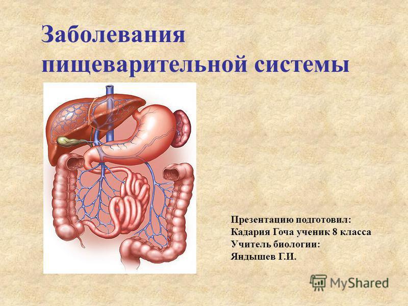 Заболевания пищеварительной системы Презентацию подготовил: Кадария Гоча ученик 8 класса Учитель биологии: Яндышев Г.И.