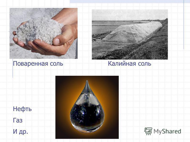 Поваренная соль Калийная соль Нефть Газ И др.