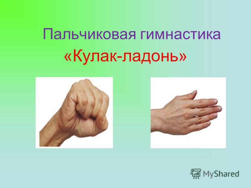 Пальчиковая гимнастика «Кулак-ладонь»