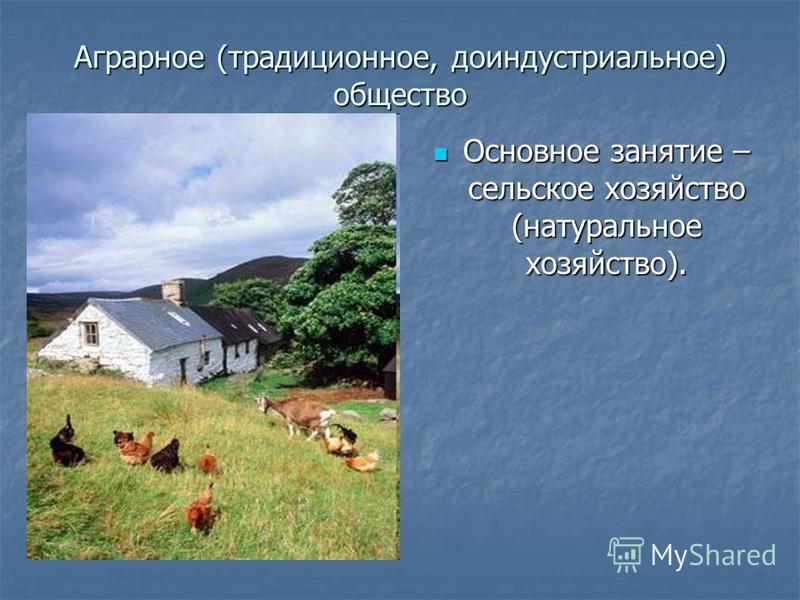Аграрное (традиционное, доиндустриальное) общество Основное занятие – сельское хозяйство (натуральное хозяйство). Основное занятие – сельское хозяйство (натуральное хозяйство).