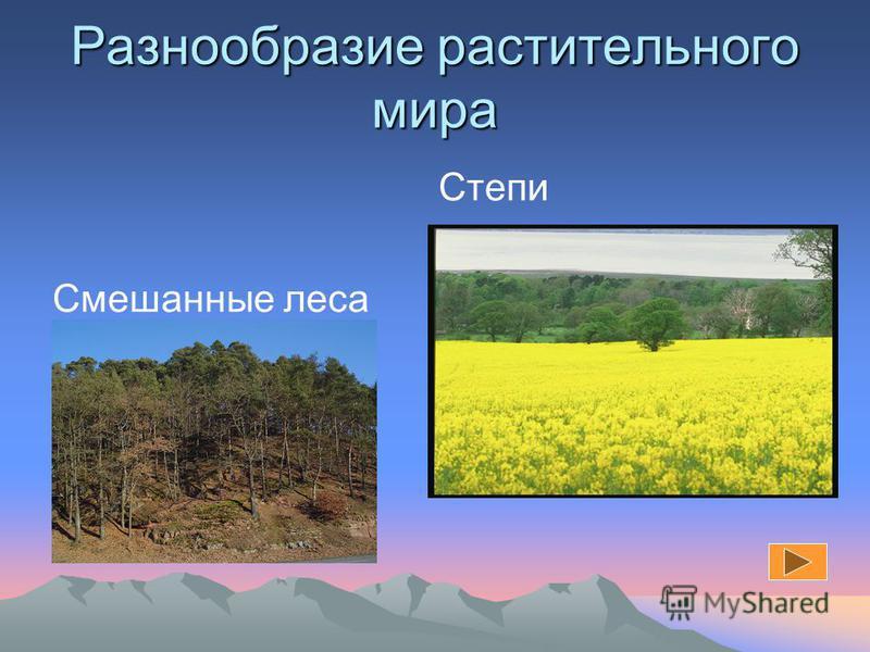 Факторы, влияющие на растительность Климат Грунтовые воды Почва Деятельность человека Рельеф(высотная поясность)
