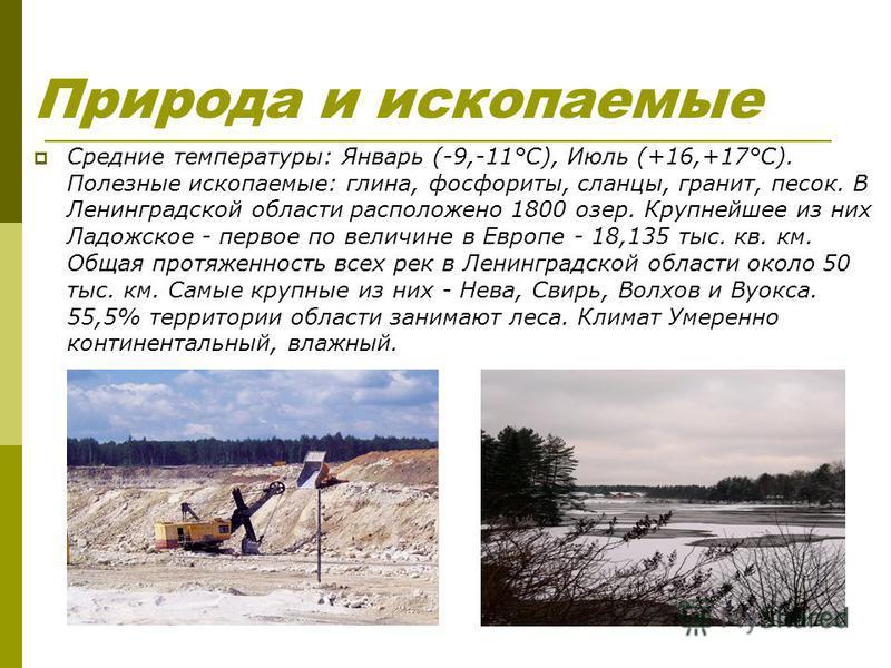 Природа и ископаемые Средние температуры: Январь (-9,-11°С), Июль (+16,+17°С). Полезные ископаемые: глина, фосфориты, сланцы, гранит, песок. В Ленинградской области расположено 1800 озер. Крупнейшее из них Ладожское - первое по величине в Европе - 18