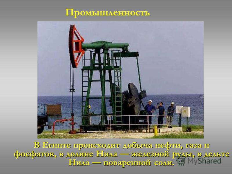 В Египте происходит добыча нефти, газа и фосфатов, в долине Нила железной руды, в дельте Нила поваренной соли. Промышленность