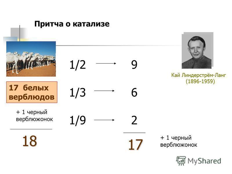 17 белых верблюдов Кай Линдерстрём-Ланг (1896-1959) (1896-1959) Притча о катализе + 1 черный верблюжонок 1/2 1/3 1/9 18 962962 17 + 1 черный верблюжонок