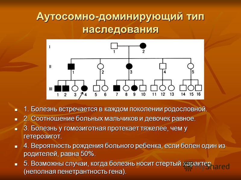 Аутосомно-доминирующий тип наследования 1. Болезнь встречается в каждом поколении родословной. 1. Болезнь встречается в каждом поколении родословной. 2. Соотношение больных мальчиков и девочек равное. 2. Соотношение больных мальчиков и девочек равное