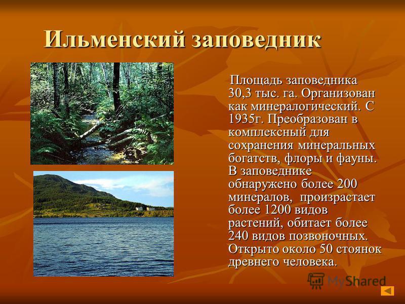 Ильменский заповедник Площадь заповедника 30,3 тыс. га. Организован как минералогический. С 1935 г. Преобразован в комплексный для сохранения минеральных богатств, флоры и фауны. В заповеднике обнаружено более 200 минералов, произрастает более 1200 в