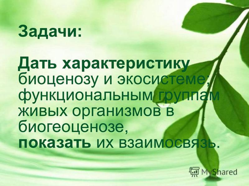 Задачи: Дать характеристику биоценозу и экосистеме; функциональным группам живых организмов в биогеоценозе, показать их взаимосвязь.