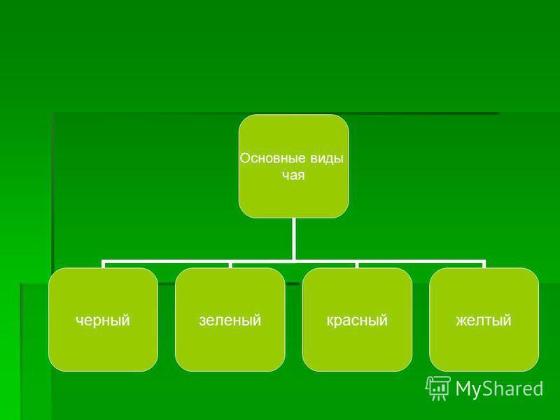 Основные виды чая черный зеленый красный желтый