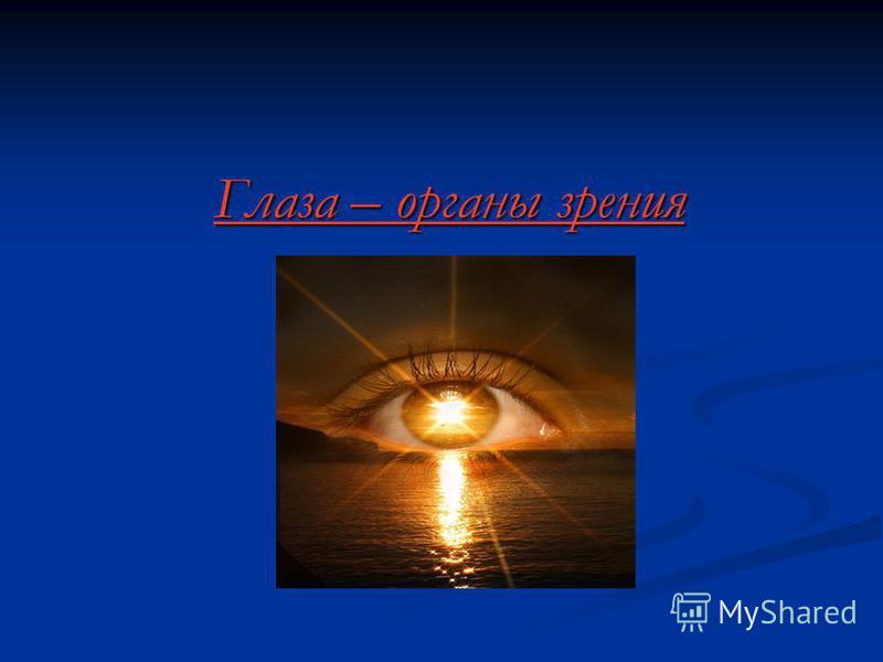 Глаза – органы зрения