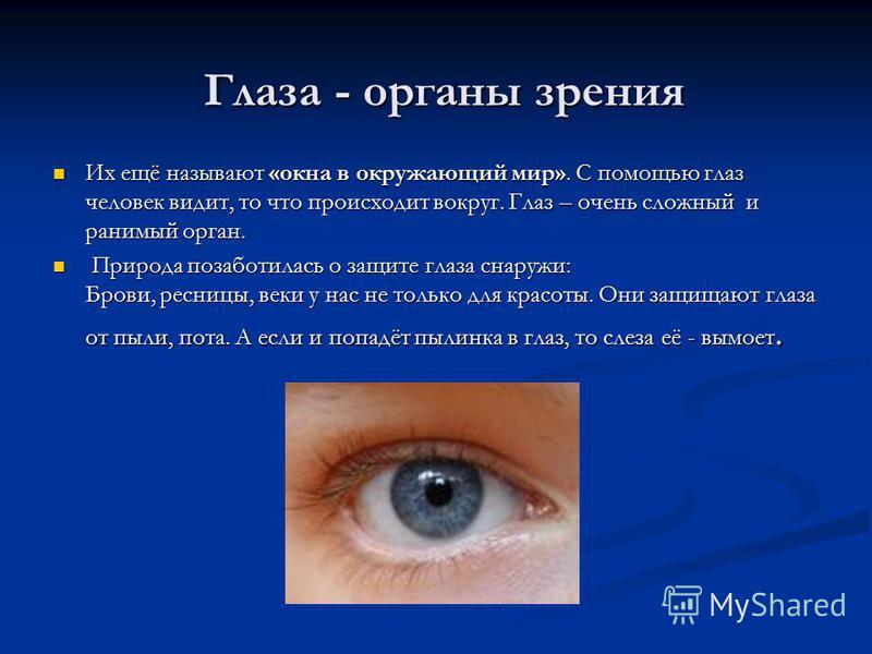 Глаза - органы зрения Их ещё называют «окна в окружающий мир». С помощью глаз человек видит, то что происходит вокруг. Глаз – очень сложный и ранимый орган. П Природа позаботилась о защите глаза снаружи: Брови, ресницы, веки у нас не только для красо
