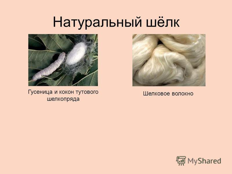 Натуральный шёлк Гусеница и кокон тутового шелкопряда Шелковое волокно