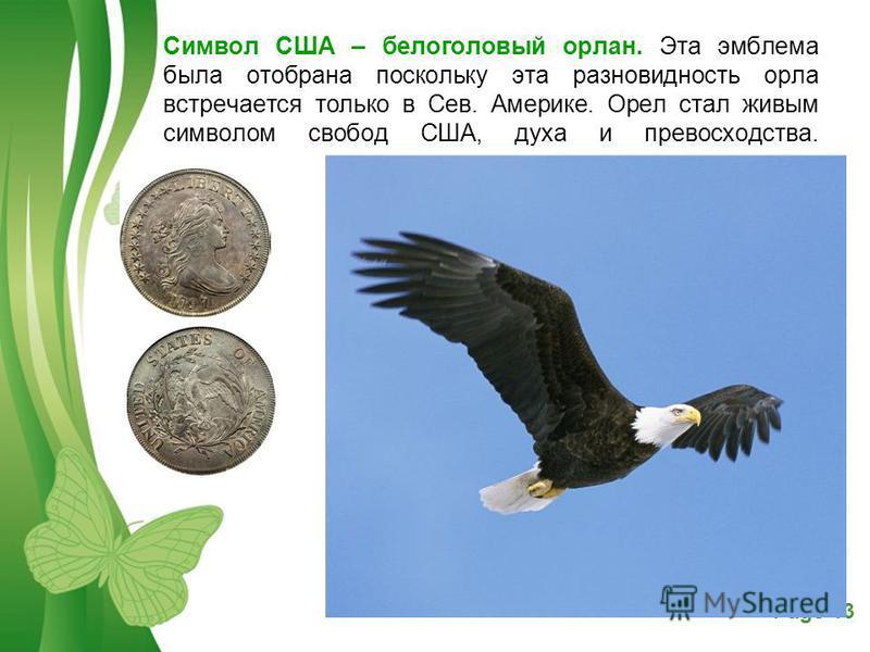 Free Powerpoint TemplatesPage 13 Символ США – белоголовый орлан. Эта эмблема была отобрана поскольку эта разновидность орла встречается только в Сев. Америке. Орел стал живым символом свобод США, духа и превосходства.