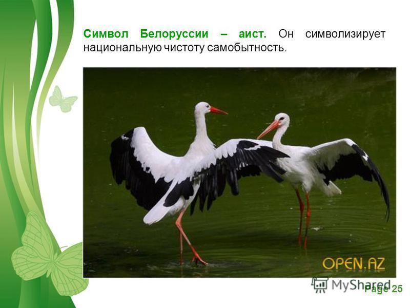 Free Powerpoint TemplatesPage 25 Символ Белоруссии – аист. Он символизирует национальную чистоту самобытность.