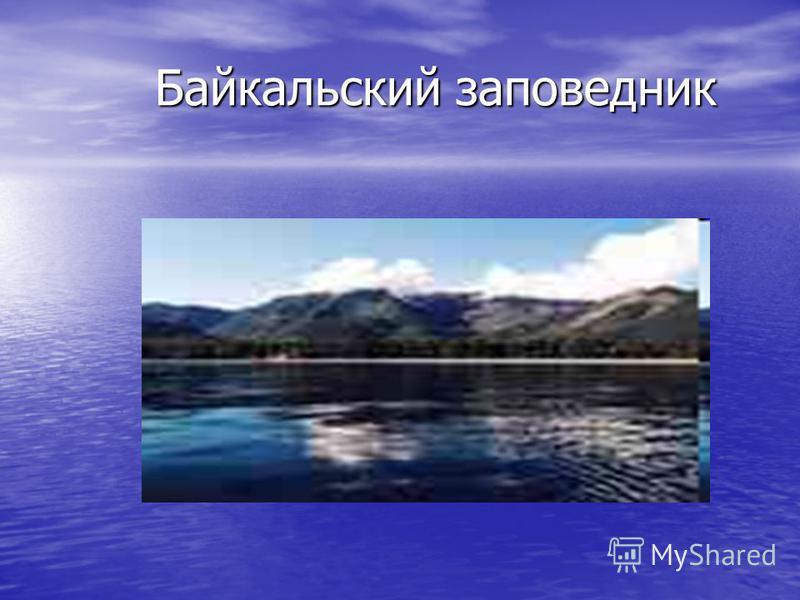 Байкальский заповедник Байкальский заповедник