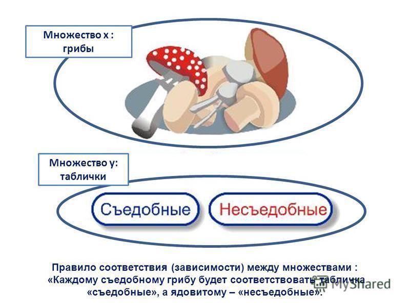 Правило соответствия (зависимости) между множествами : «Каждому съедобному грибу будет соответствовать табличка «съедобные», а ядовитому – «несъедобные». Множество х : грибы Множество y: таблички