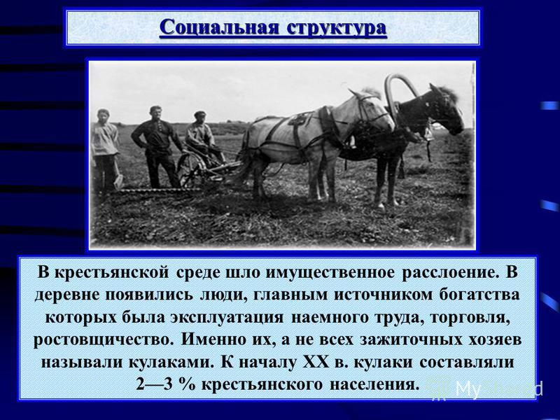 Социальная структура В крестьянской среде шло имущественное расслоение. В деревне появились люди, главным источником богатства которых была эксплуатация наемного труда, торговля, ростовщичество. Именно их, а не всех зажиточных хозяев называли кулакам