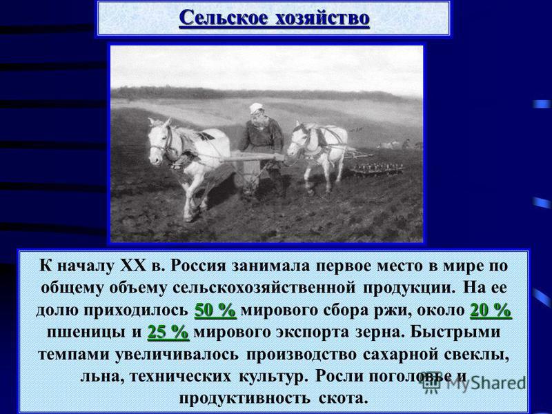 50 %20 % 25 % К началу XX в. Россия занимала первое место в мире по общему объему сельскохозяйственной продукции. На ее долю приходилось 50 % мирового сбора ржи, около 20 % пшеницы и 25 % мирового экспорта зерна. Быстрыми темпами увеличивалось произв