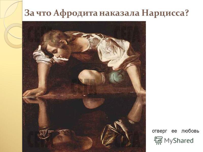За что Афродита наказала Нарцисса? отверг ее любовь