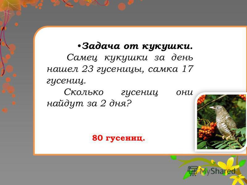 Задача от кукушки. Самец кукушки за день нашел 23 гусеницы, самка 17 гусениц. Сколько гусениц они найдут за 2 дня? 80 гусениц.